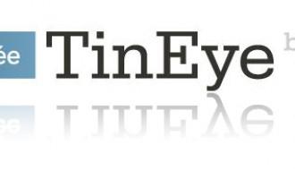 Bilder direkt suchen mit Tineye