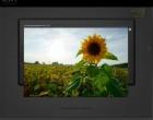 Sony NEX-5 Travel Scout – Fotokampagne